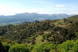 TOUR EN BICICLETA ELÉCTRICA POR LOS MONTES DE MARBELLA